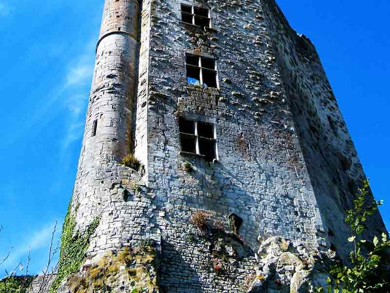 Chateau de Chaudenay le Château