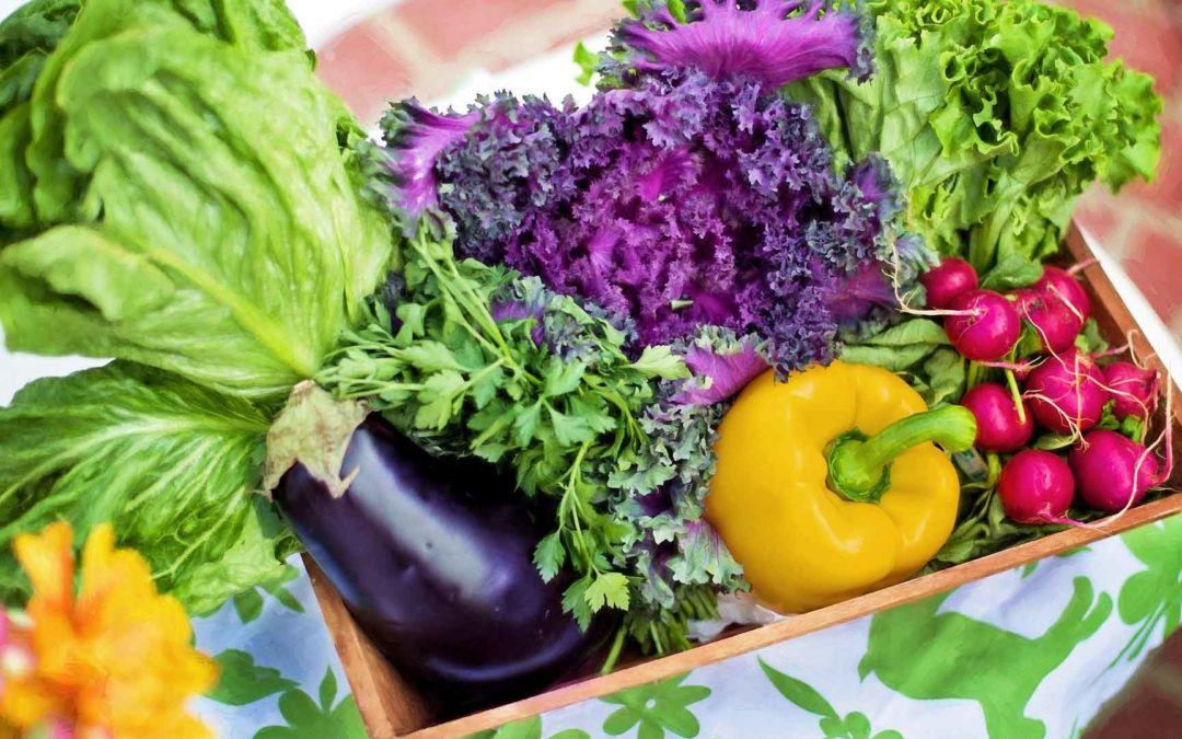 Projet Alimentaire Territorial départemental