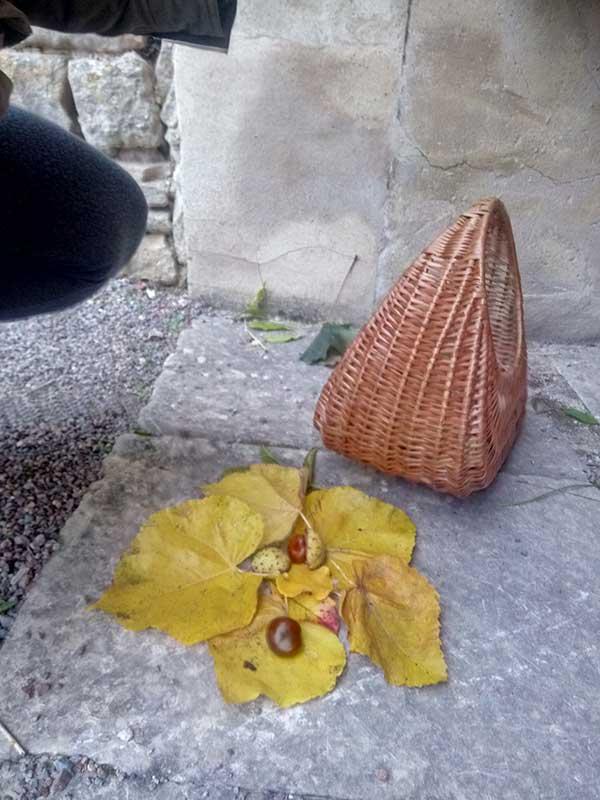Panier et composition de feuilles