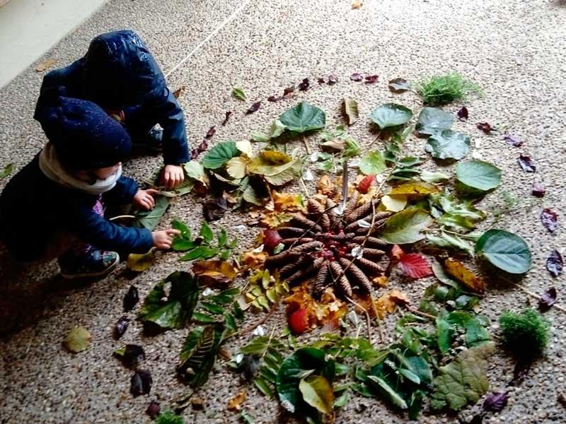 Composition de feuilles, lichen et pommes de pin