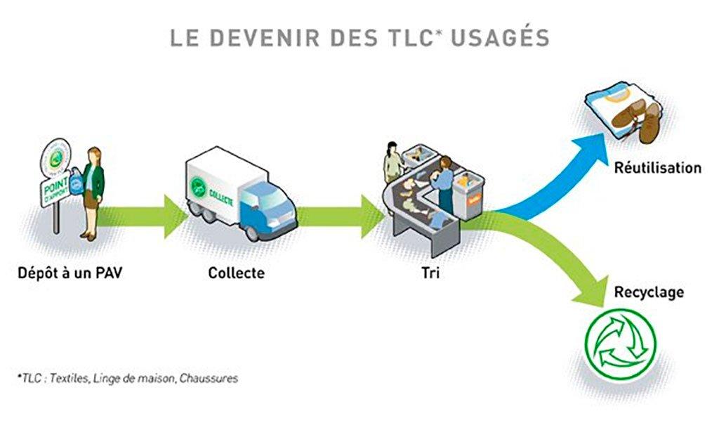 Infographie : le devenir des TLC