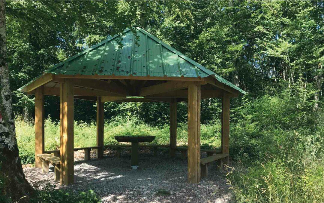 Randonnée ludique et pédagogique au Bois Royal de Pierre Saux