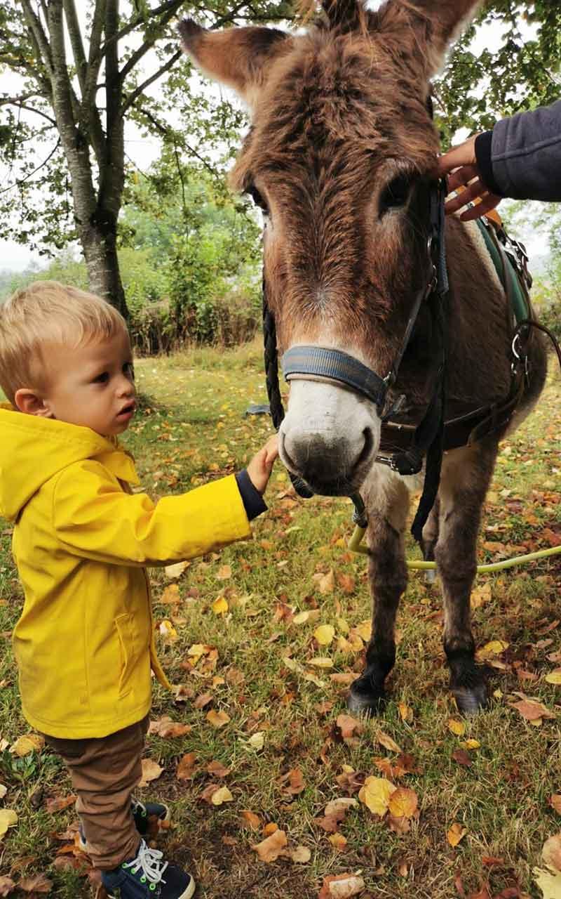 Découverte des ânes de chez Kayane avec le Relais